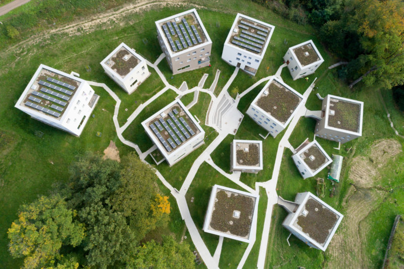 Aerial and Drone photography: View of a collection of modern houses from above. They are all surrounded by trees and grass and you can see the overgrown flat roofs.
