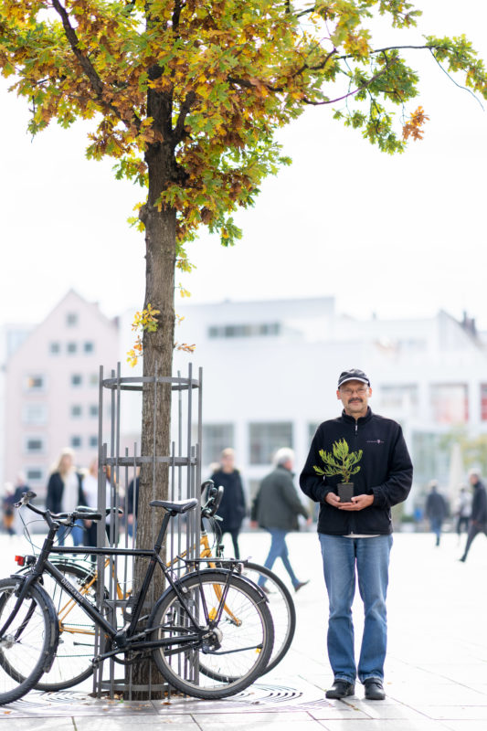 Editorial Portrait: An employee who is committed to planting trees. He stands in the backlight on a busy square under a tree and has a seedling in his hand.