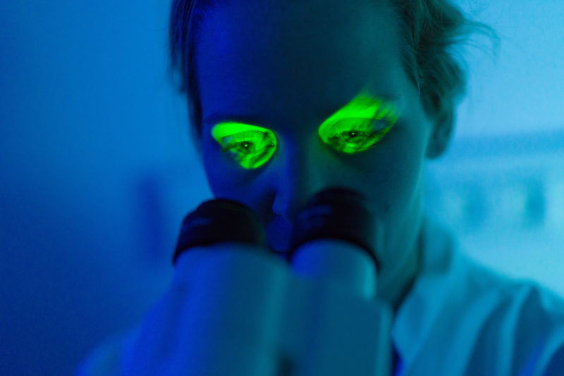 Science photography: A researcher at the microscope examining tissue samples at the Max Planck Institute for Medical Research in Heidelberg. In the dark laboratory light from the microscope eyepieces makes her eyes shine green .