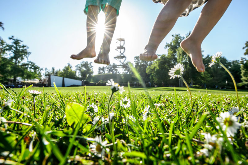 Two children jump into the air on a green meadow. You can only see their bare legs and the rays of the sun behind them. Large in the foreground are blades of grass and daisies.
