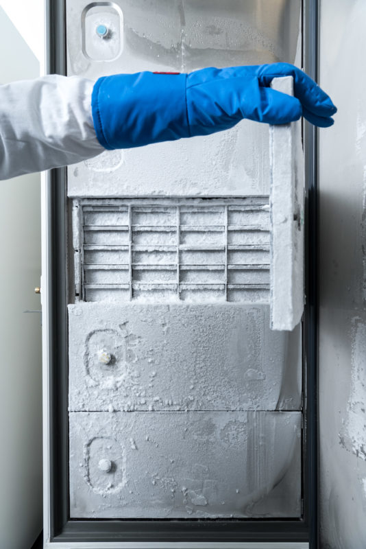 Science photography: This cold chamber contains samples for antibiotics research at the Interfaculty Institute of Microbiology and Infection Medicine Tübingen (IMIT) at the University of Tübingen. A scientist is just opening one of the isolation doors with a thick blue cold protection glove.