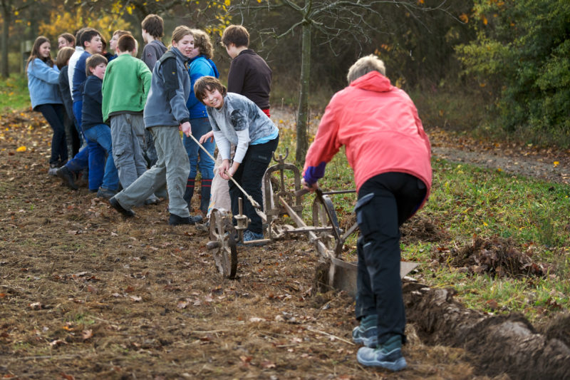 Editorial photography, subject learning and education: A school class meets in the Hohenlohe Open Air Museum plowing. The teacher guides the plow handle.