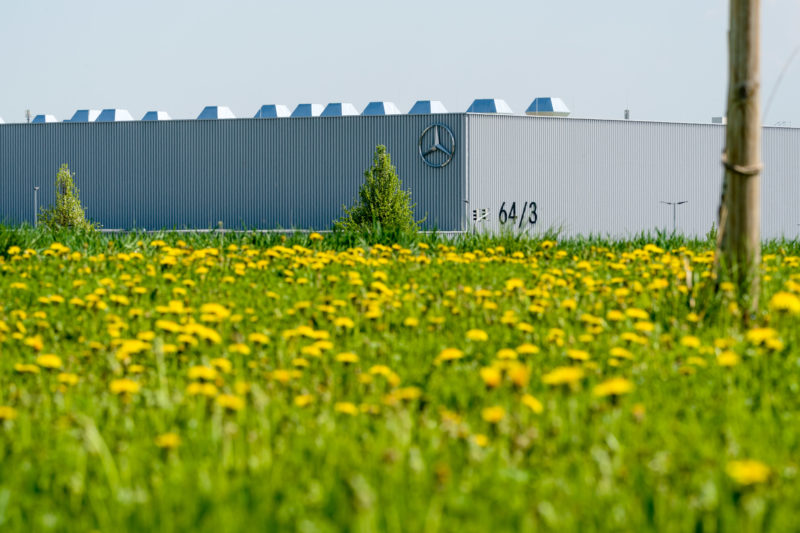 Landscape photography with contrasts: In the foreground yellow flowering rape fields In the background a large factory of Mercedes-Benz.