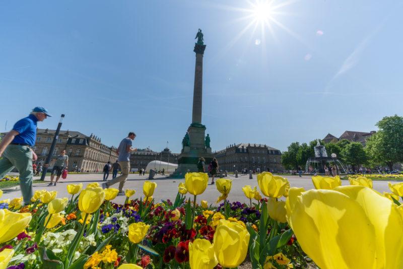 Stadtportrait Stuttgart: Landschaftsfotografie: Stadtansicht vom Schlossplatz in Stuttgart im Sommer. Im Vordergrund ein Blumenbeet und dahinter die Jubiläumssäule vor dem Neuen Schloß.