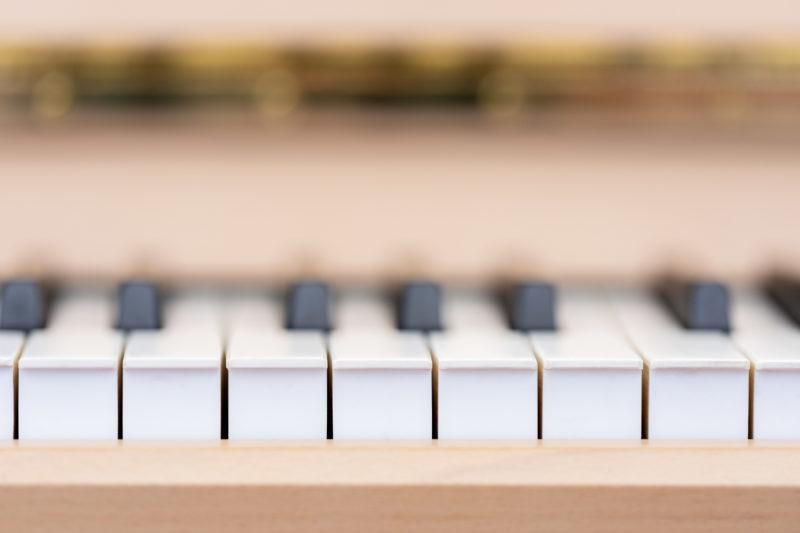 Reportagefotografie: Wissenschaftler erzeugen künstliches Elfenbein: Künstliches Elfenbein kann bei Klaviertasten eingesetzt werden. Nahaufnahme von Klaviertasten.