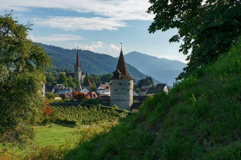 Stadtportrait: Zug am Zuger See. Weinreben an der historischen Stadtmauer von Zug. Dahinter der Kapuzinerturm und die Berge der Umgebung.