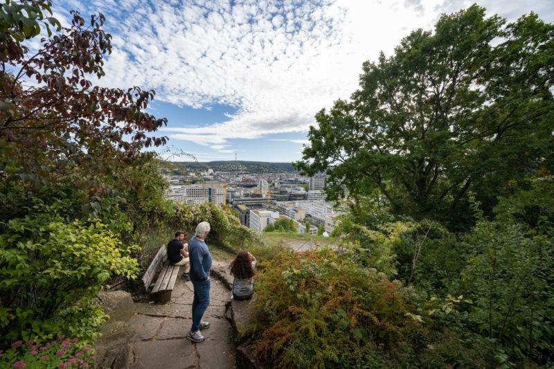 Stadtportrait Stuttgart: Von einem der vielen grünen erhöhten Aussichtspunkte rund um den Stadtkessel sieht man das Häusermeer der Innenstadt. Es sind eigentlich immer Besucher da, die sich bei einem Spaziergang mit dem schönen Ausblick erholen.