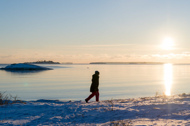 Landscape photography: Winter in Finland: Walk along the Baltic Sea coast in the deep reddish sun. The landscape is frozen. A swan swims far out in the cold water.
