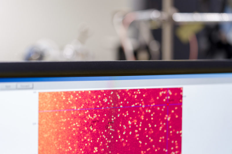Science photography at an institute of physics at the University of Stuttgart: On a screen you can see a red coloured scientific image from an experimental setup.